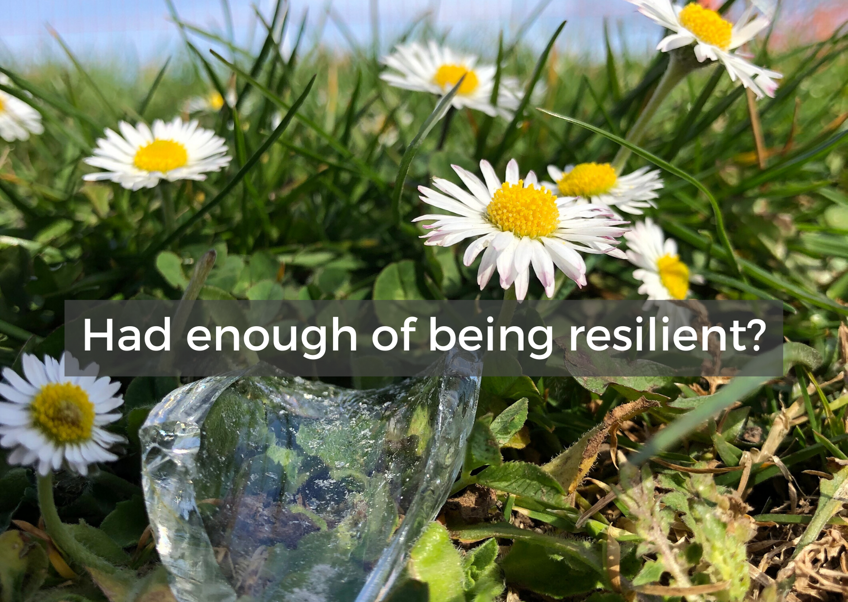 Had Enough of Being Resilient