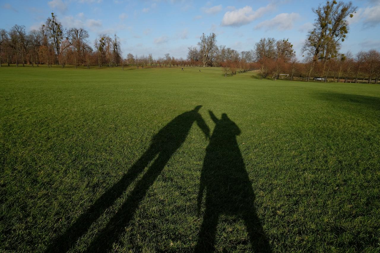 Walking at Burghley